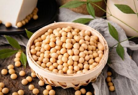 Easily eat beans away from misunderstandings