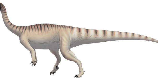How dinosaurs learn to walk